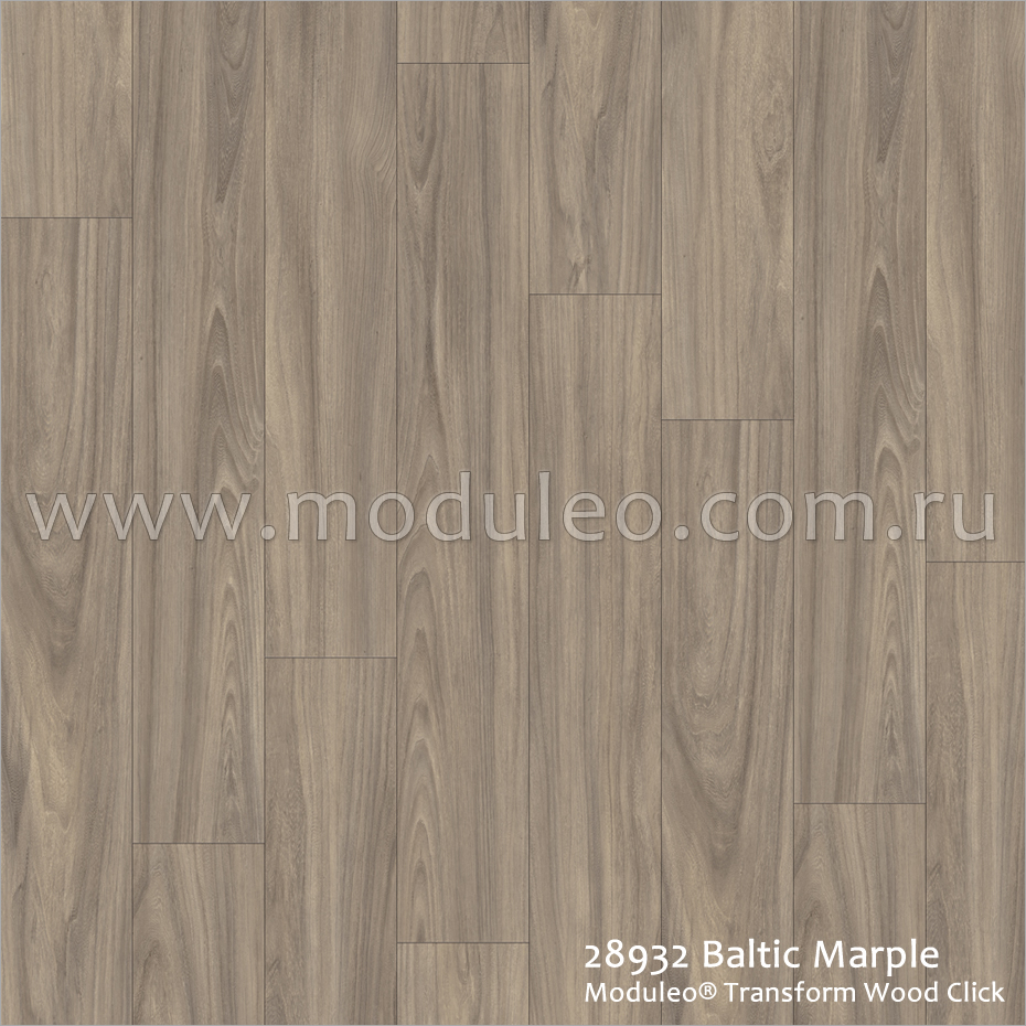 Transform Wood Click. 28932 Baltic Marple. IVC Moduleo.